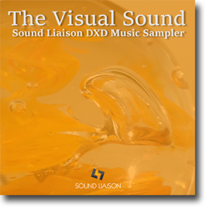 Sound Liaison DXD Music Sampler - All formats €10.-
